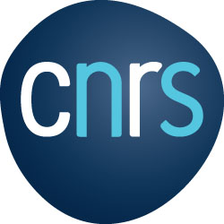 access to the CNRS website